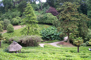 14 Of The Best UK Gardens